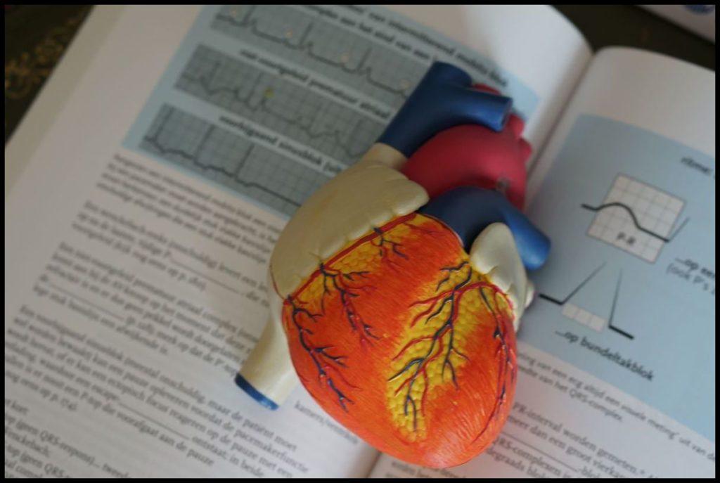 Herzratenvariabilität: Was ist das?